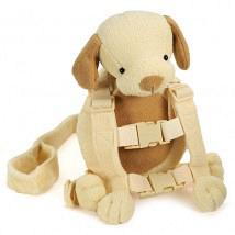 2 in 1 Harness Buddy Pup 1